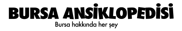 Bursa Ansiklopedisi